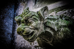 Bayeux (SMB-PHOTOGRAPHIC) Tags: statue pierre gargoyles chimre bayeux cathedrale gargouilles dmon chimres monstres