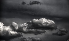 (newapplestore) Tags: sky blackandwhite bw clouds plane