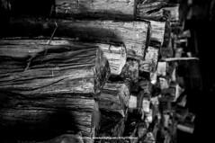 Winter Reserves |  (francisling) Tags: wood winter house snow heritage japan site log village sony unesco  alpha  gifu   firewood shirakawago gassho    5n zukuri nex5