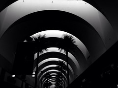 A Dozen Arches (rhansantiago) Tags: apple mall flickr arches applestore socal cerritos clickx iphone5 blackandwhiteonly iphonephotography loscerritosshoppingcenter