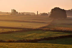 Early Morning in Peak District (Dr Manaan Kar Ray) Tags: landscape dawn countryside peakdistrict earlymorning stonewalls goldenlight walkingcountry