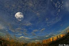 City Moon (AvijitNandy) Tags: sky moon canon with mark iii bluesky 5d canon815f4fisheye