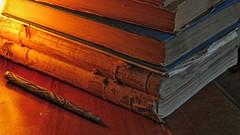 beauty of the books (Kadri Yama) Tags: canon books powershot oldbooks kitap kitaplar eskikitap canonpowershotsx50hs powershotsx50hs kadriyama