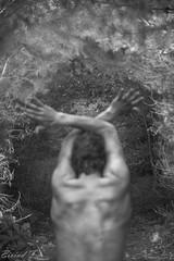 Meg i skogen 4 (flensborg1) Tags: portrait bw white selfportrait man black tree forest self naked denmark outside blackwhite back body series serie kropp naken curvs slt33