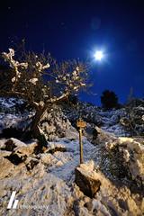 Snowy Night (F. Prieto // fprieto.es) Tags: moon snow night arbol noche nieve luna alicante sendero aitana fotografianocturna fernandoprieto nikond5000