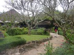 Honeymoon - Safari Park Hotel (August 2013) (irlLordy) Tags: trip holiday hotel lucy honeymoon kenya nairobi august safaripark 2013