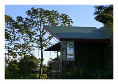 Cala lodge, Monteverde (Lucsaflex) Tags: costarica lodge monteverde cloudforest nevelwoud calalodge
