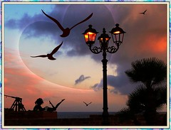 ❤。.•*Io e te.. (antonè) Tags: sardegna tramonto mare natura cielo cuore palme amore lampioni gabbiano alghero sanvalentino wonderfulworld 14febbraio antonè festadegliinnamorati