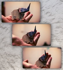 Not everyone can hold a twenty pound elephant in one hand! (☼ EkkyP ☼) Tags: money three origami hand palm note folded 365 february wah wh 2014 £20 44365 hereio