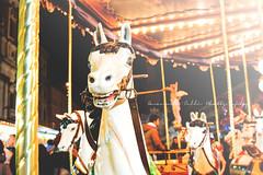 (Verdeacqua Azulada) Tags: rome roma carousel romantic giostra carrousel carrusel carosello