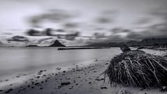 Tonal beauty (Riddhish Chakraborty) Tags: longexposure bw detail monochrome sunrise hawaii nikon cloudy hi cloudscape foreground lowcontrast longshutterspeed chinamanshat kualoaregionalpark riddhish wwwrbartzenfoliocom kneohebayoahu