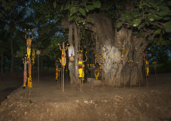 Old Altar Of Stones Surrounded By Trishuls, The Trident Of Shiva And Vels, Murugan's Spear, Covered With Offerings, Madurai, India (Eric Lafforgue Photography) Tags: india color colour tree night outside outdoors countryside village faith religion belief nobody nopeople altar shiva hinduism madurai tamilnadu spear murugan offerings trishul trident placeofworship colorimage hindugod hindudeity