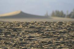 Dobles texturas de arena y dunas