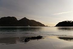 20140421-14-Morning at Wineglass Bay.jpg (Roger T Wong) Tags: morning sea beach trek nationalpark sand walk australia hike granite tasmania np bushwalk tramp eastcoast wineglassbay freycinet 2014 freycinetnationalpark canonef24105mmf4lisusm canon24105 canoneos6d rogertwong