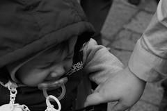 _SAM8834 (alessioxcastiglione) Tags: new old italy music birds children fly donna italia foto child famiglia bambini religion samsung chiesa occhi uomo panoramica musica dio papa sicily cristo fotografia palermo bianco monumenti nero bianconero santo sicilia primopiano croce colombe italiano vecchio anziani bambino tecnica nuovo religione chiese tradizione palerm santit precessione nx1000 alessiocastiglione