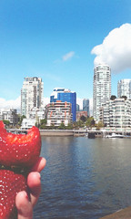 strawberries + this view (juuuuni) Tags: sun public sunshine skyline vancouver clouds island berry bc view market eating granville strawberries condos bitten