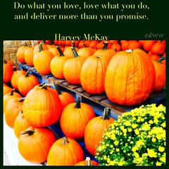 133 (EDWW day_dae (esteemedhelga)) Tags: life flowers plants love beach me nature beauty loving garden blessings creativity hope living walks alone remember peace hand risk friendship time god you faith joy lakes parks belief celebration intelligence thoughts together gift quotes soul future dreams passion knowledge laughter worry strength care tomorrow happyholidays yesterday ponds teach sayings herb learn struggle fellowship gentle courage nightmares nurseries postive encouragment edww daydae esteemedhelga helpconfidence