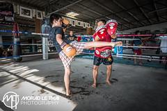 DSC_3664 (MORAD LE THAI Photography) Tags: pattaya thailande sityodtong muaytha