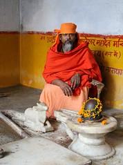 Mahānt Śaṅkarānanda Girī (Shrimaitreya) Tags: india temple god indian nandi shiva hindu hinduism jaipur swami mandir rajasthan rajasthani sannyasin sannyas śiva dhuna śivaliṅgam