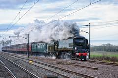 White Rose through Brookmans (sgoldswo) Tags: locomotive steamengine steamtrain steamlocomotive tangmere spamcan 34067 battleofbritainclass brookmanspark lightpacific nikon70200mmf28gvrii nikond750 valentineswhiterose