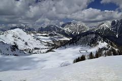 Finding... (matteo.buriola) Tags: nikon monte alpi friuli malga sauris festons d3100 morgenlait