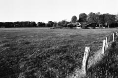 Santpoort Noord (Sean Anderson Classic Photography) Tags: m42 pmk bwgreenfilter fomapan contaxrx 29mm meyeroptik orestegon