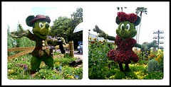 MICKEY AND MINNIE WELCOMING AT EPCOT (Visual Images1) Tags: two green orlando epcot diptych topiary florida mickeymouse minniemouse