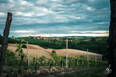 Fabiano (Torchia Marco) Tags: nuvole sony monferrato vigneti filtri lungheesposizioni ilce6000