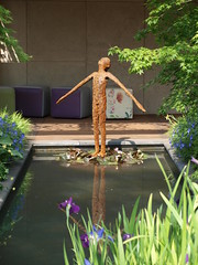 Chelsea Flower Show 2016 (The original SimonB) Tags: flowers london floral chelsea may barracks flowershow rhs 2016 royalhospital