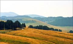 Zlatibor (Katarina 2353) Tags: summer panorama mountain film landscape nikon europe serbia valley srbija zlatibor katarinastefanovic katarina2353