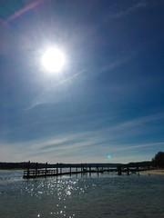 Mid-morning sun over the old dock at the end of Old Dock Road (Matt McGrath Photography) Tags: newyork water unitedstates longisland northshore kingspark olddockroad