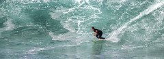 In there (Bill Collison) Tags: beach newcastle surf surfing swell merewether