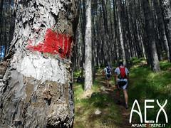 Lizzari-27 (Cicloalpinismo) Tags: parco mountain bike video foto extreme mtb cai monte sentiero alpi aex 190 apuane appennino vinca vetta foce escursione altana ugliancaldo cicloalpinismo cicloescursionismo lizzari