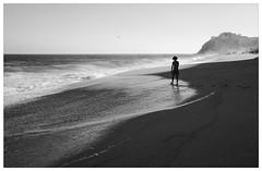 Boy by the Sea (Nancy N Hsieh) Tags: ocean boy sunset blackandwhite beach mexico backlit sihlouette playadeldivorcio