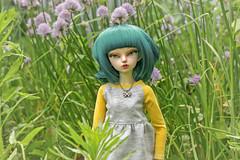 *** (Purple Raccoon) Tags: nature bjd fairyland msd effy minifee rheia balljonteddoll
