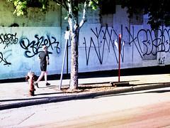 Running (Taymaz Valley) Tags: nyc uk cambridge usa chicago newyork toronto canada paris france berlin london art love boston japan vancouver digital germany photography tokyo la persian washington artist photographer iran miami montreal ottawa cuba digitalart guelph waterloo oxford iranian tehran photoart photooftheday rasht shomal marchtown