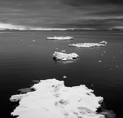 P1110659 (Craig Hemsath) Tags: snow nature norway lumix panasonic svalbard arctic micro g6 43 linblad 1235 expeditions mirrorless