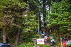 DSC_1945 (Amishrit) Tags: mountain snow rock forest garden landscape temple shimla flora nikon manali kulu chandigarh kufri rohtang hadimba d7100 vasista