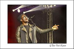 AFRICA O'YE  2 (Derek Hyamson) Tags: liverpool stage entertainer candids hdr seftonpark africaoye