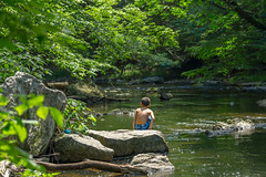 100% Summer (Black Hound) Tags: ridleycreekstatepark sony a500 minolta