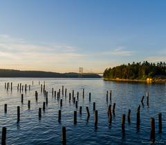 Narrows Bridge (BananaPancakes08) Tags: bridge washington state tacoma narrows