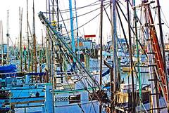 Fishermans Wharf10252007 (5) - Copy (digifotovet) Tags: sanfrancisco california boat fishing fishermanswharf