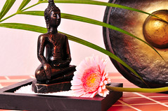 Wellness Gong Buddha (djcharlou) Tags: pink beauty germany asia stones buddha rosa karte steine health grn braun fitness spa weiss gong handtuch wellness blten bambus hintergrund gesundheit entspannen entspannung dampf gesund indisch asiatisch klangschalen duften orchrideen