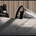 F-15D Eagle