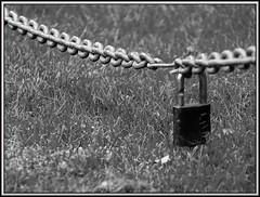48.Padlock (Scavenger Hunter Gatherer) (Lyndon (NZ)) Tags: newzealand closeup blackwhite fuji gimp nz scavengerhunt hawkesbay xs1 fujifilmxs1 shg48 scavengerhuntergatherer