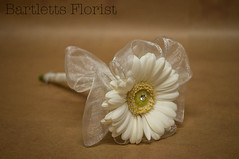 Gerbera wand (Francesca Delanty-Granger Photography) Tags: white flower girl yellow bride pin wand cream fabric gerbera bow bridesmaid ribbon flowergirl organza bridemaid diamonte raunched