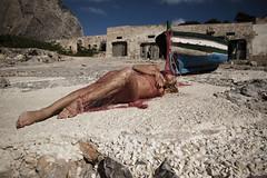 La Mattanza (Buldrock) Tags: barca mare sicilia sanvitolocapo tonnara tonnaradelsecco buldrock stefanobuldrini