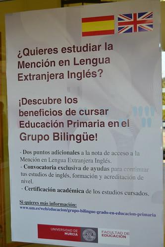Grado Bilingüe en Educación Primaria 4