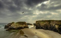 Ancient view (Eduardo Regueiro) Tags: espaa beach rocks day cloudy cliffs galicia accidente lugo acantilado ascatedrais ribadeo lascatedrales mareabaja geologico pleamar