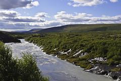 Hraunfossar (geh2012) Tags: tree clouds river iceland waterfalls ísland á tré ský hraunfossar fossar geh hvítá gunnareiríkur